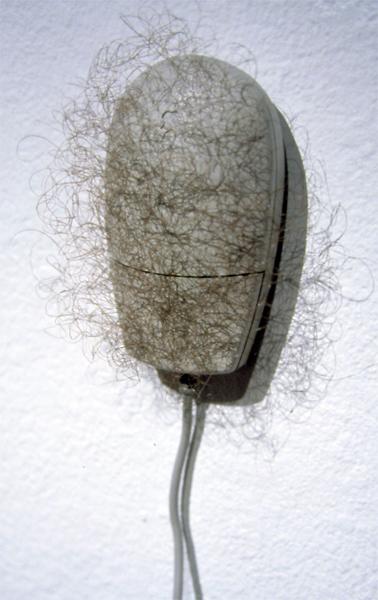 Hairy Mouse Joseph Delappe